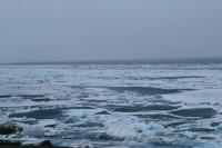 Уровень воды на Енисее поднялся выше 10 метров
