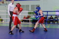 Семеро дудинских боксеров завоевали шесть призовых мест