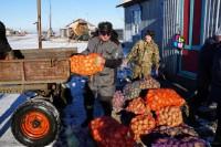 В Левинских Песках раскупили полторы тонны овощей