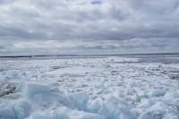 Кромка льда между Потапово и Игаркой
