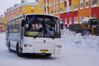 Автобусы выйдут на линию в полдень воскресенья