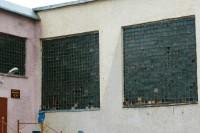 В главном спортзале Дудинки обновят витражи