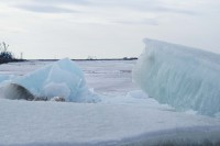 Зарегистрированы новые данные по ледоходу