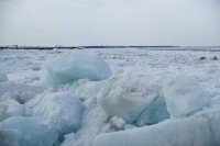 В районе Потапово начался ледоход
