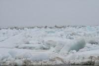 Кромка льда в 830 км от Дудинки