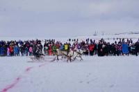 В Дудинке отпраздновали юбилейный День оленевода