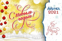 Поздравление Главы города Юрия Гурина с Новым годом!
