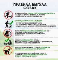 Дудинцам напоминают о правилах содержания и выгула домашних животных