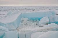 За сутки лед приблизился к Дудинке на 66 км